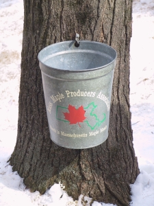 mmmm-bucket